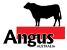 Angus Footer
