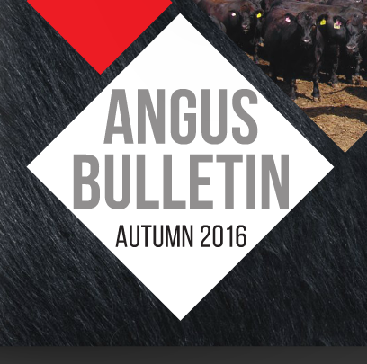 Angus Autumn Bulletin