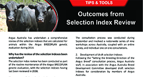 Outcomes from 2014 Selection Index Review