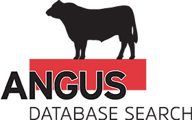 Select Tools - AngusDATABASE SEARCH