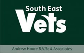 South-East-Vets-280