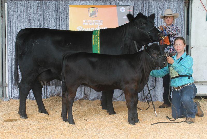 Reserve Champion Owned and Bred