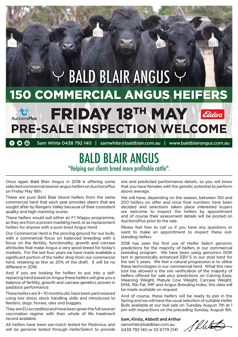 BB_Newsletter-PAGE-1