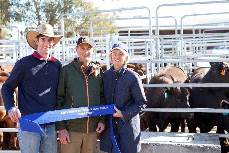 The Rissman Family of Rosedale Pastoral Co with their winning domestic pen (Lot 2093) Photo Credit Danni MacCue Photography