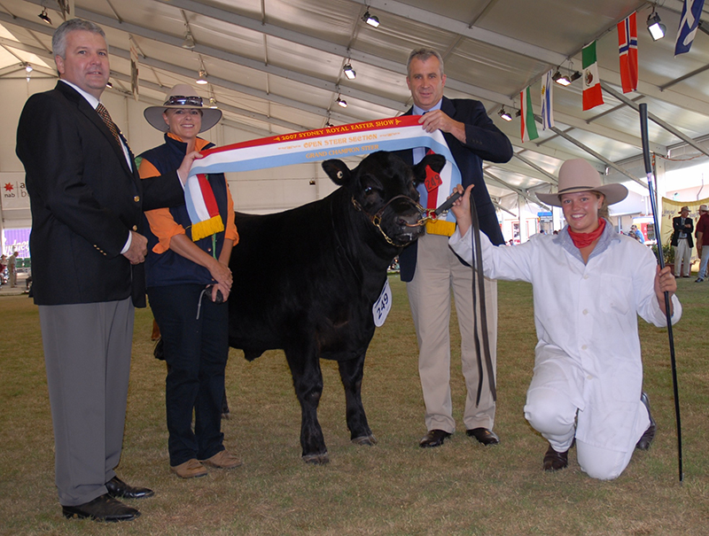 Grand Champion steer presentation at the 2007 Sydney Royal Easter Show