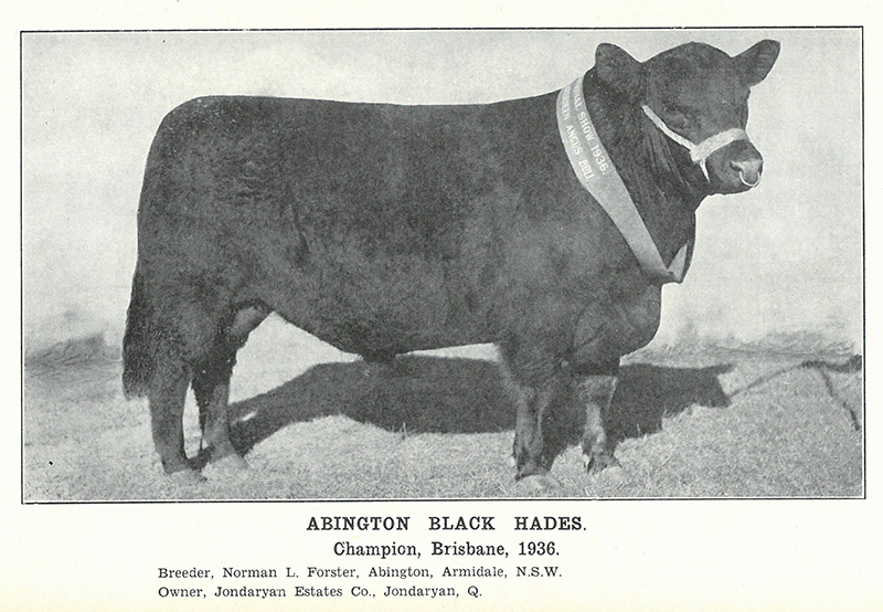 Herd Book of Australia, Volume 7: Published by the Aberdeen-Angus Herd Book Society of Australia, March 1938