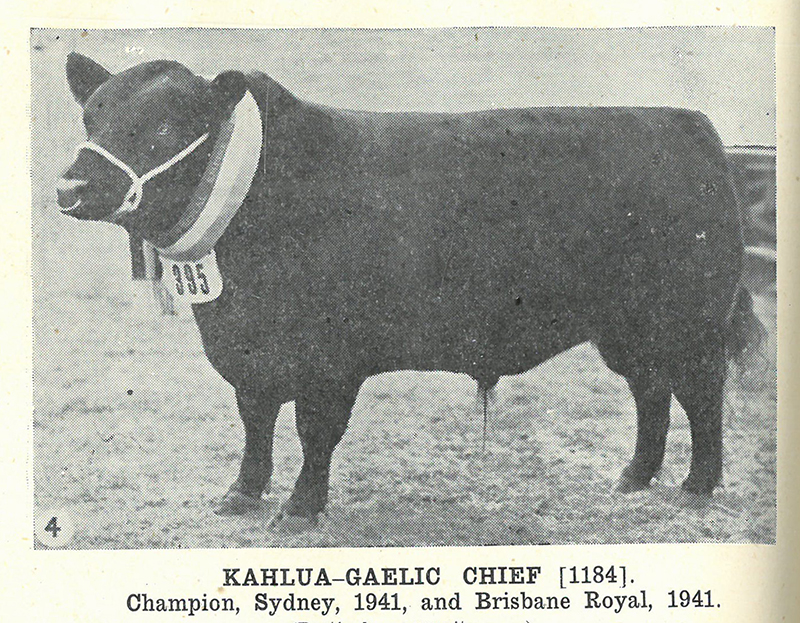 Breeder & Owner, Kahlua Pastoral Co, Kahlua Coolac NSW  Herd Book of Australia, Volume 9: Published by the Aberdeen-Angus Herd Book Society of Australia, December 1942