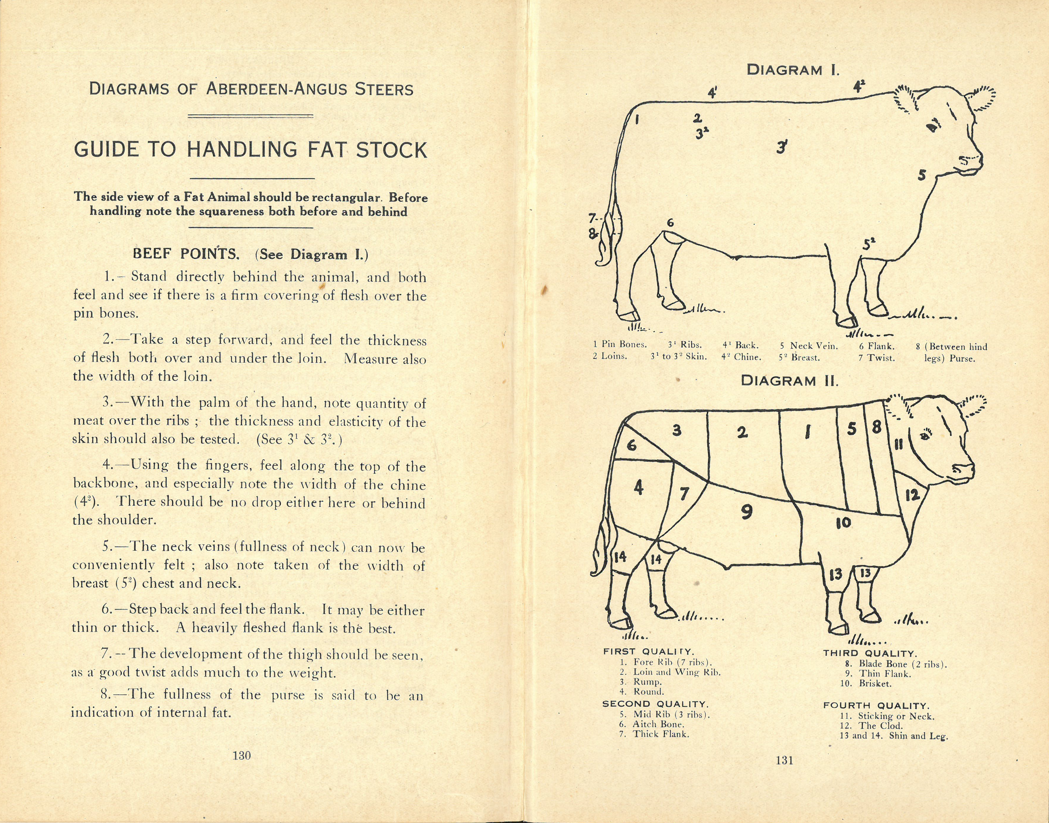 Guide to Handling Fat Stock