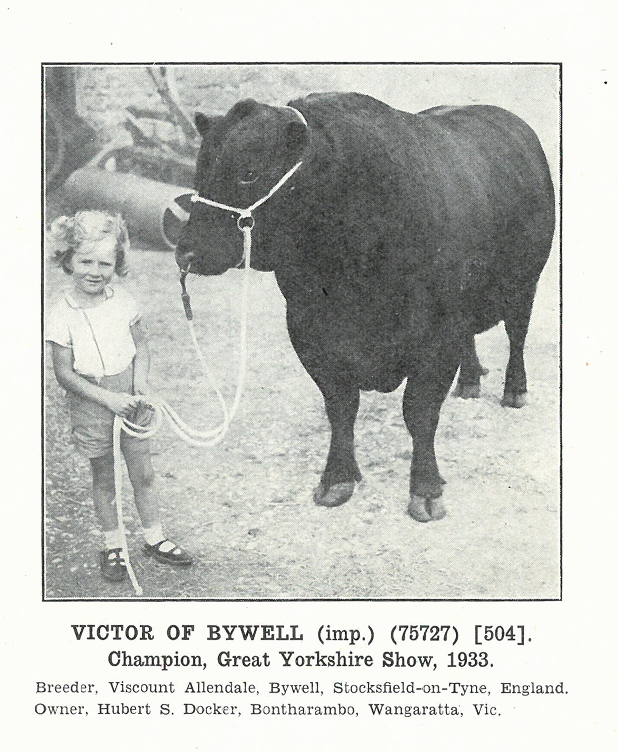 Victor of Bywell