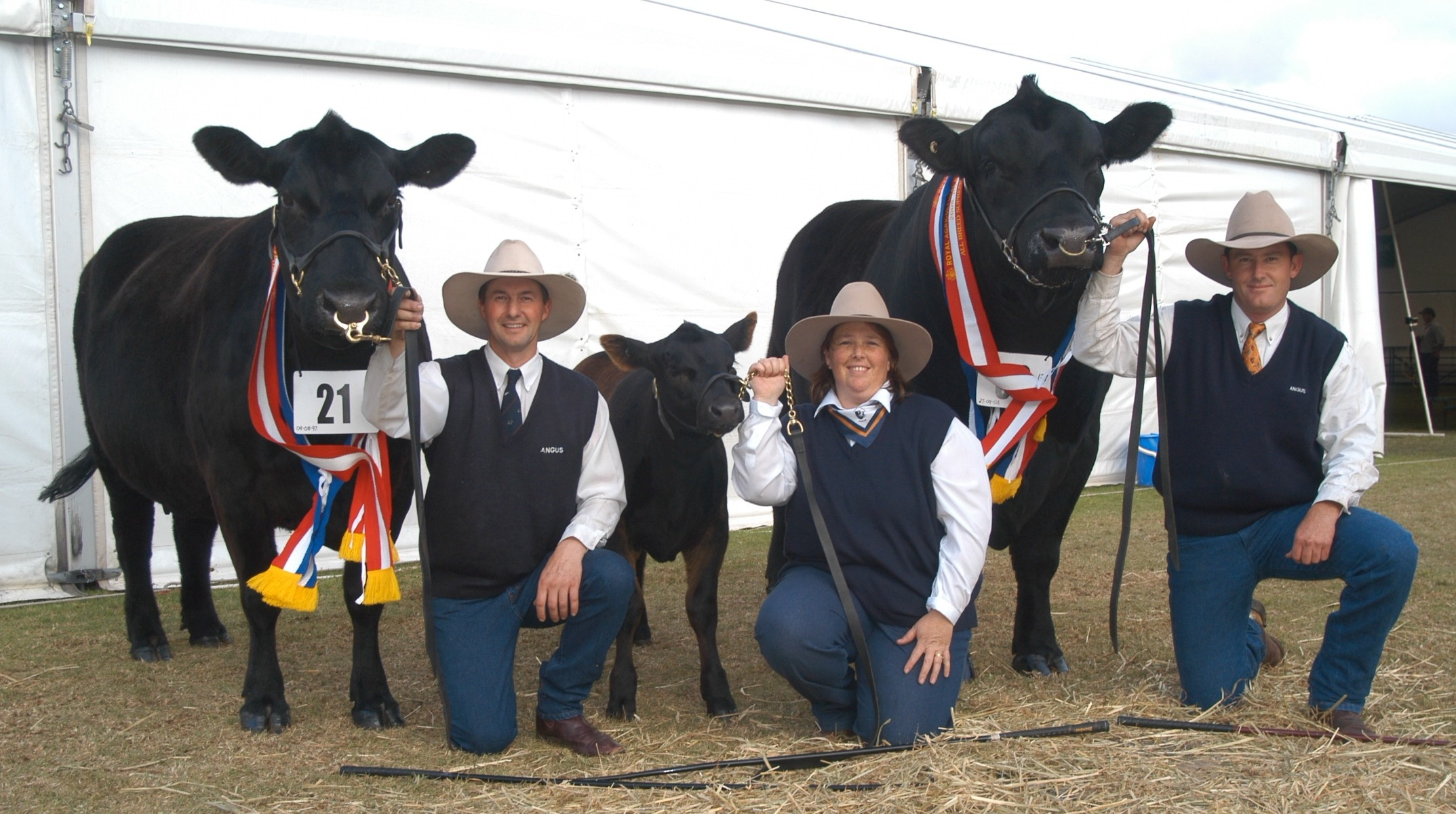 2006 All Breed Supreme Champion Pair, PJ Dream S2 exhibited by P & J McLauchlan and Rossander Tonga Y331, exhibited by Rossander Angus