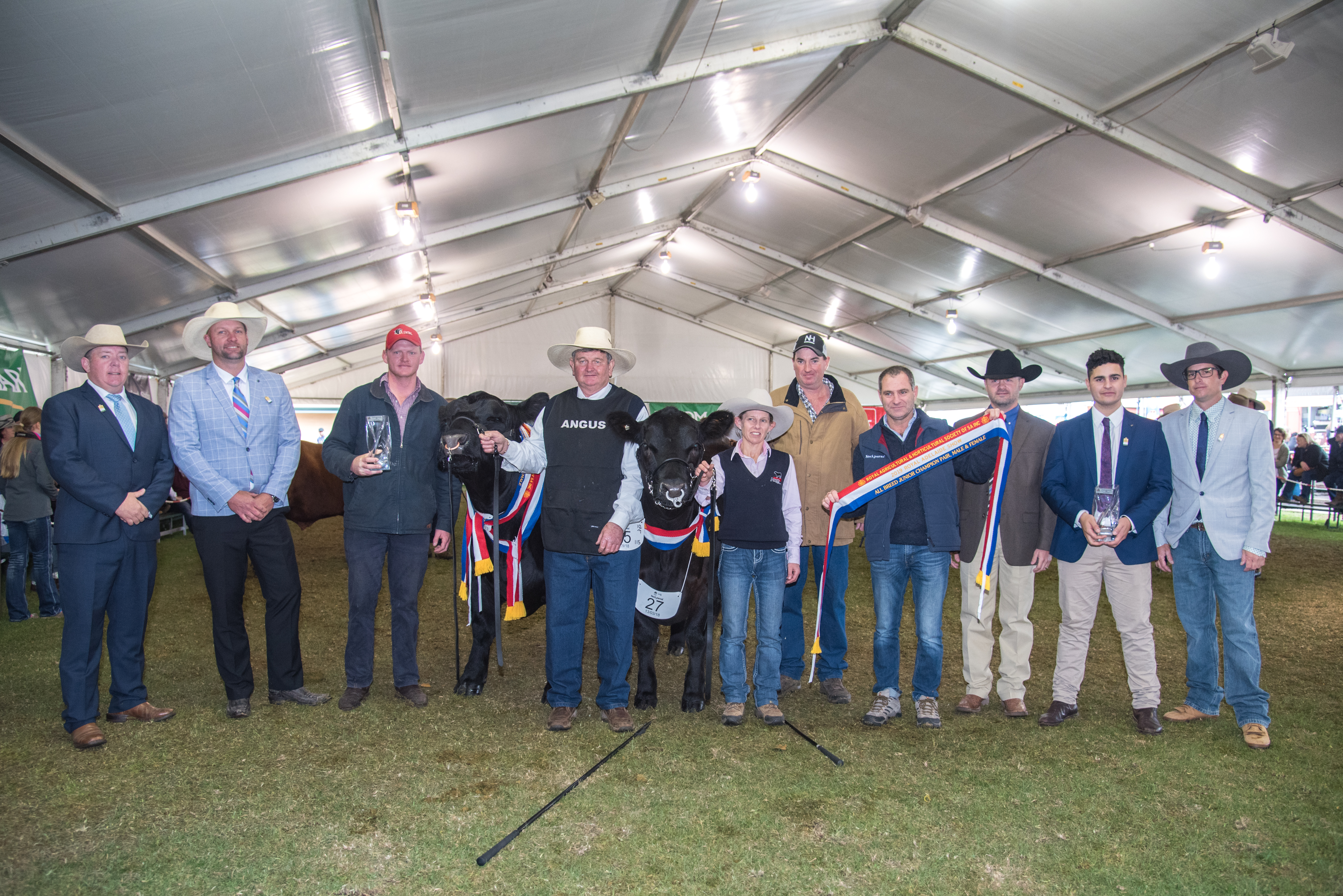 All-Breed Junior Champion Pair, Male and Female