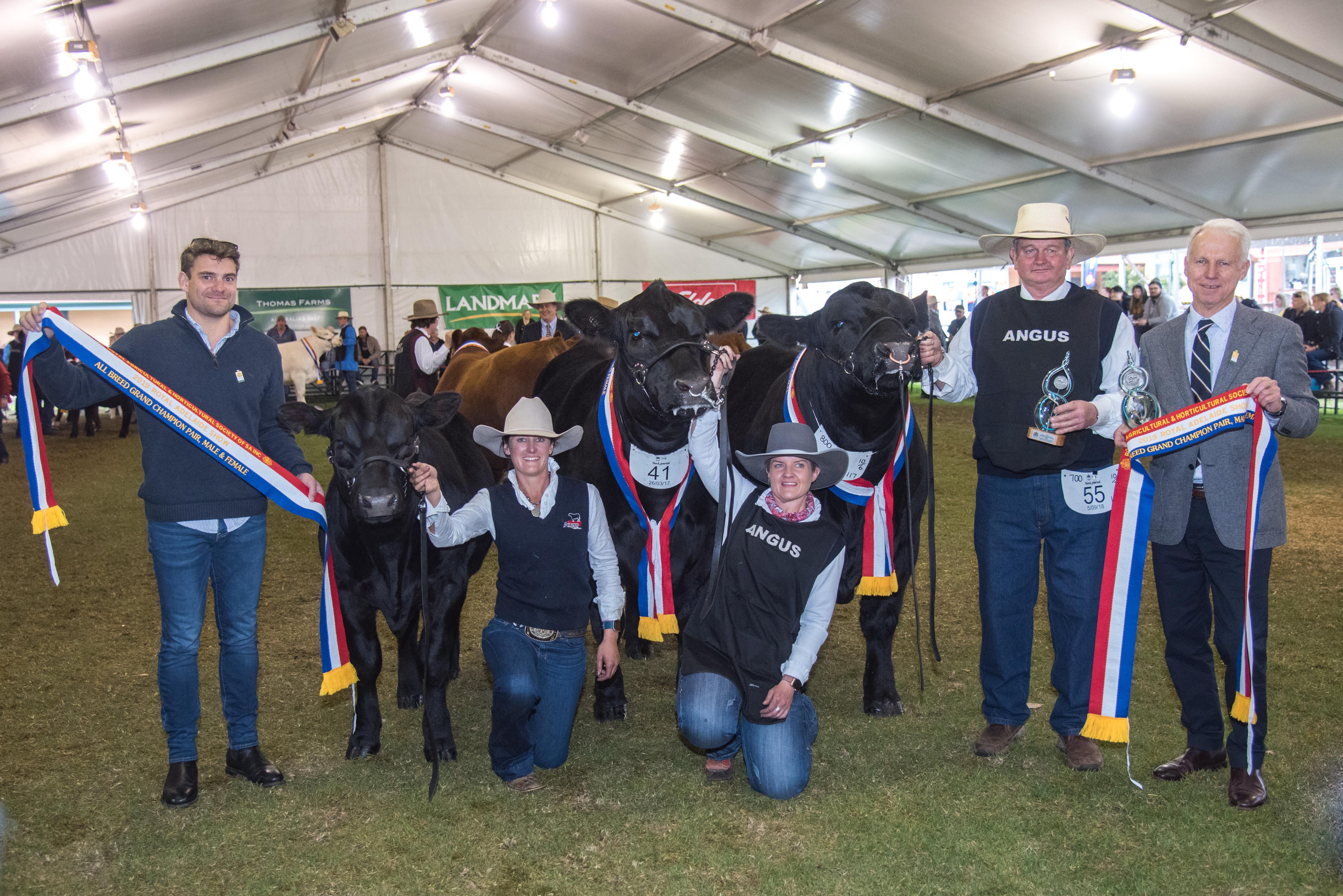 All Breed Champion Grand Champion Pair, Male and Female