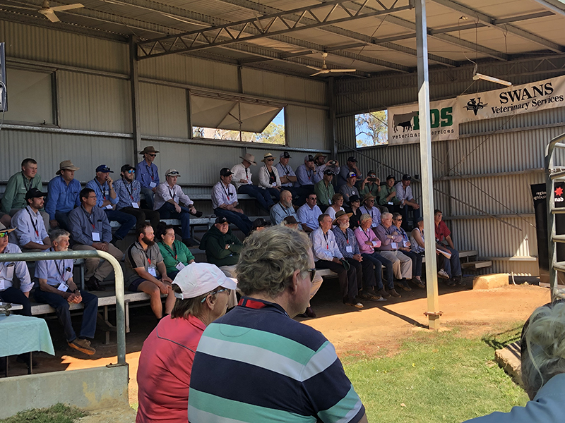 Just over 100 people were in attendance at the WA Black Friday Celebrations