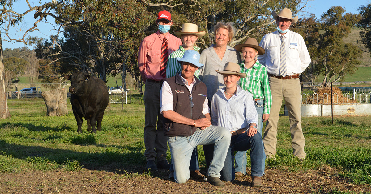 The $280,000 Australian Angus record top-priced bull with Elders agent Andrew Bickford, Bathurst, auctioneer Paul Dooley, Tamworth and Millah Murrah's Ross and Dimity Thompson and their daughters Millie, Olivia and Twiggy.
