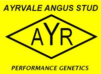Ayrvale Angus