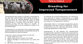 Breeding for Improved Temperament