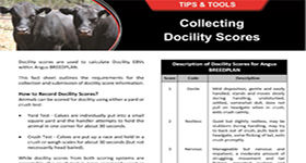 Collecting Docility Scores