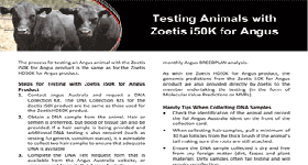 Testing Animals with Zoetis i50K for Angus