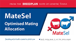 MateSel Product Brochure