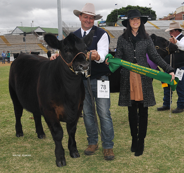Reserve Junior Champion Female