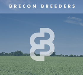 Brecon-Breeders-280