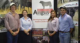 Angus Foundation Beef Australia Scholarships
