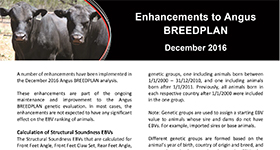 Enhancements to Angus BREEDPLAN