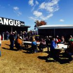 New England Angus Breeders AgQuip site available
