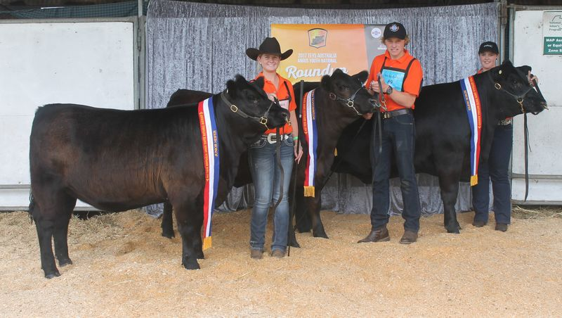 Champion Junior Senior and Inter Heifer