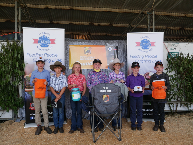 Pee Wee Junior Judging