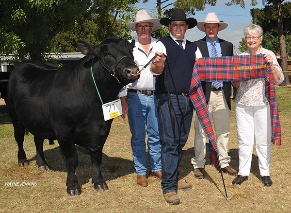 Grand Champion Bull at Canberra 2017, with exhibitor Danny Hill , Bungendore , handler Kieran Martin, Coonabarabran , NSW, Jason Sutherland , INAH ,Bowral, NSW, and Loraine Chesworth , Leeton, NSW.