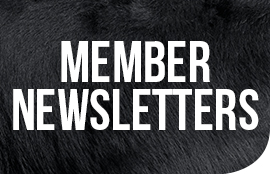 GD-Folio_Member-Newsletters-Icon