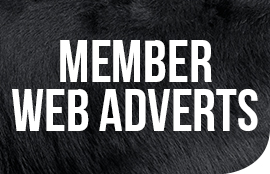 GD-Folio_Member-web-adverts-Icon