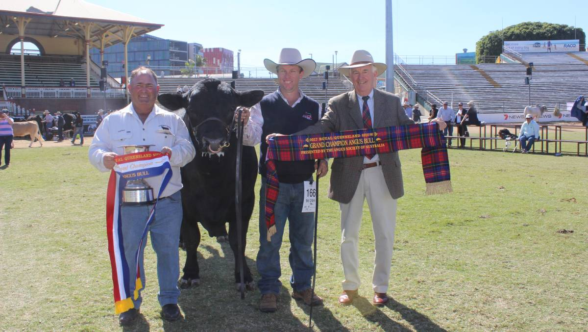 Grand champion Angus bull Carabar Docklands exhibited by Darren Hegarty, Carabar Angus Stud, Meandarra held by Glen Waldron and sashed by Greg Webster, Sarrum Angus, Toowoomba. Image courtesy of Queensland Country Life