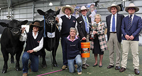 Angus Interbreed glory at Melbourne