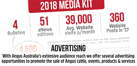 Want to advertise with Angus Australia?