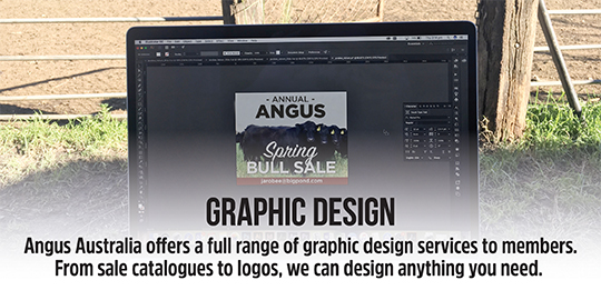 Want graphic design work completed?