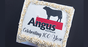 Centenary of Angus Australia, NSW Celebration