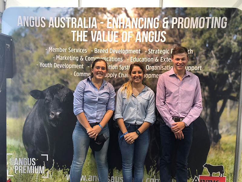 Angus Foundation Beef Australia Scholarship winners, Emily Webb-Ware, Laura Wishart and Jack Laurie