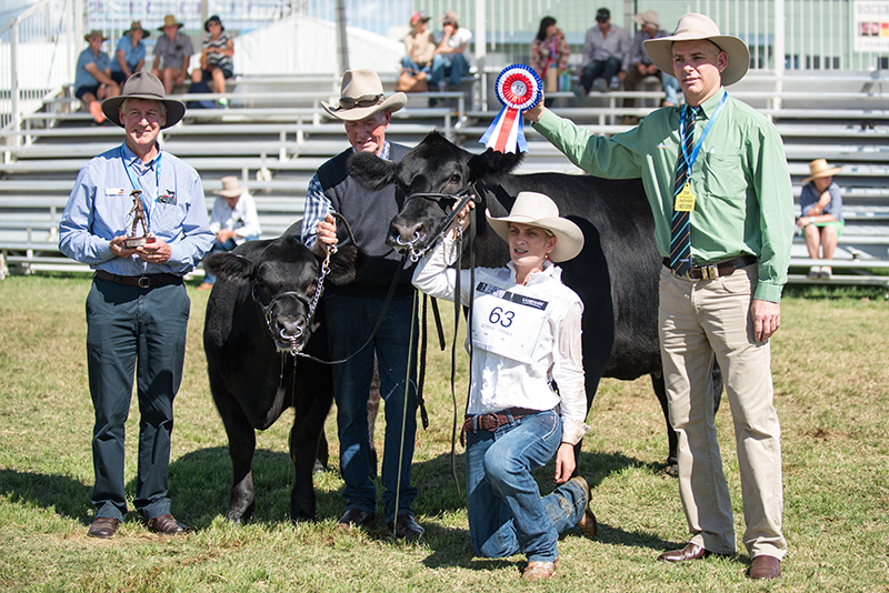 Grand Champion Female - Bowenfels Special Edition L7