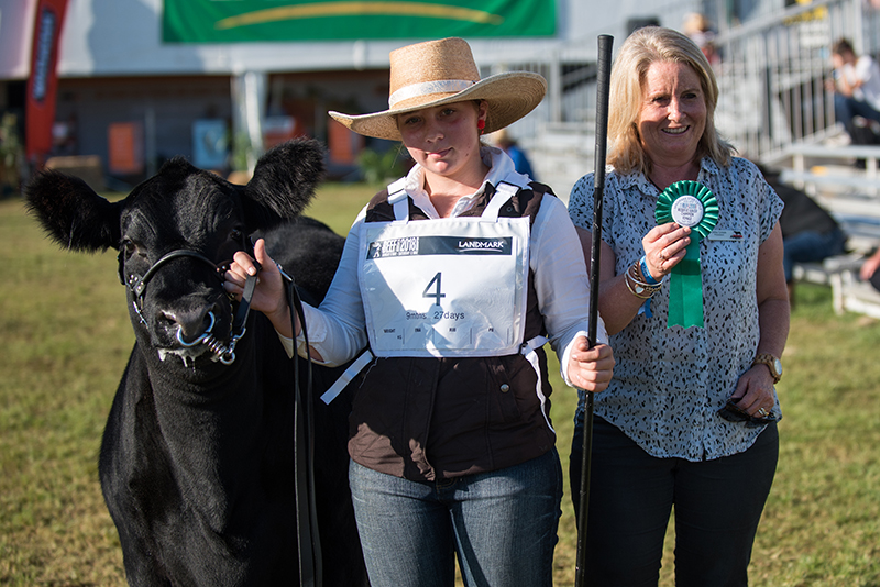 Reserve Calf Champion Female - Bowenfels Jewel N11