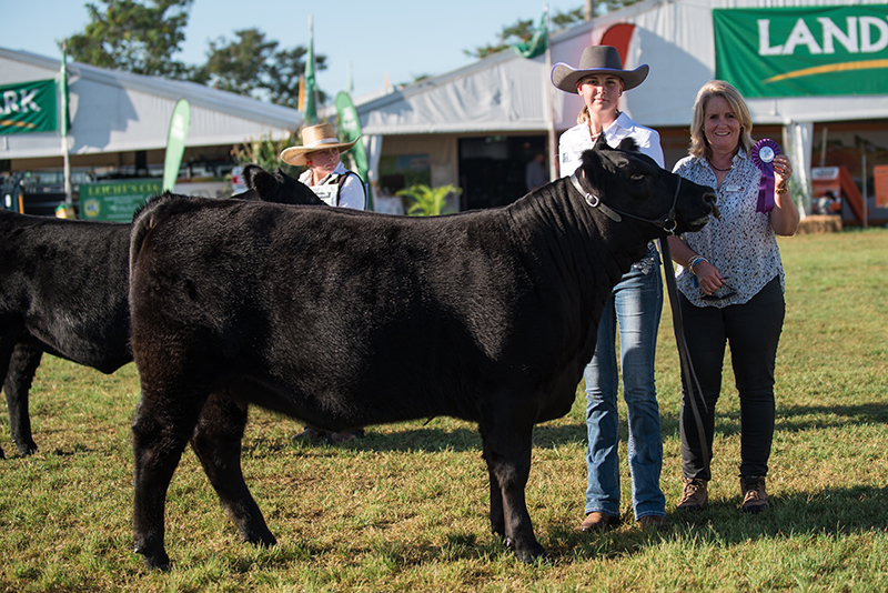 Calf Champion Female - Ruby Ridge North N6