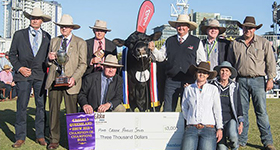 Angus triumph at EKKA 2018