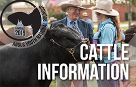 Cattle Information