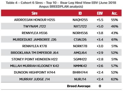 Table 4 - Cohort 6 Sires - Top 10 -  Rear Leg Hind View EBV (June 2018 Angus BREEDPLAN analysis)