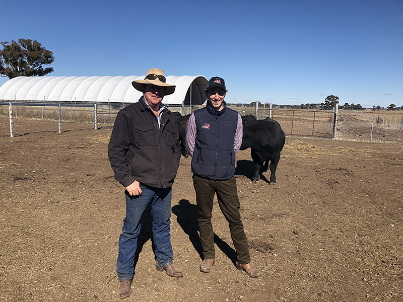Seaforth Angus - Herb Mackenzie with Angus Australia's Matthew Reynolds
