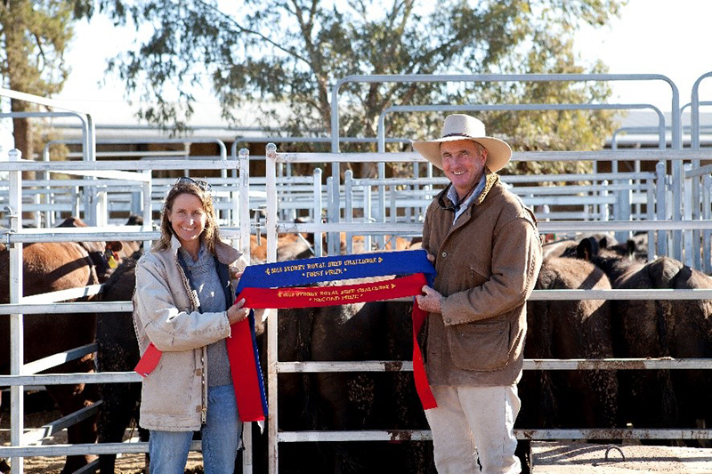 Ben and Wendy Mayne of Texas Angus with their domestic pen (Lot 2887) Photo Credit Danni MacCue Photography