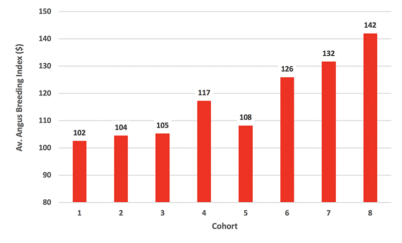 Figure 3. Average Angus Breeding Index (ABI) for ASBP sires by Cohort