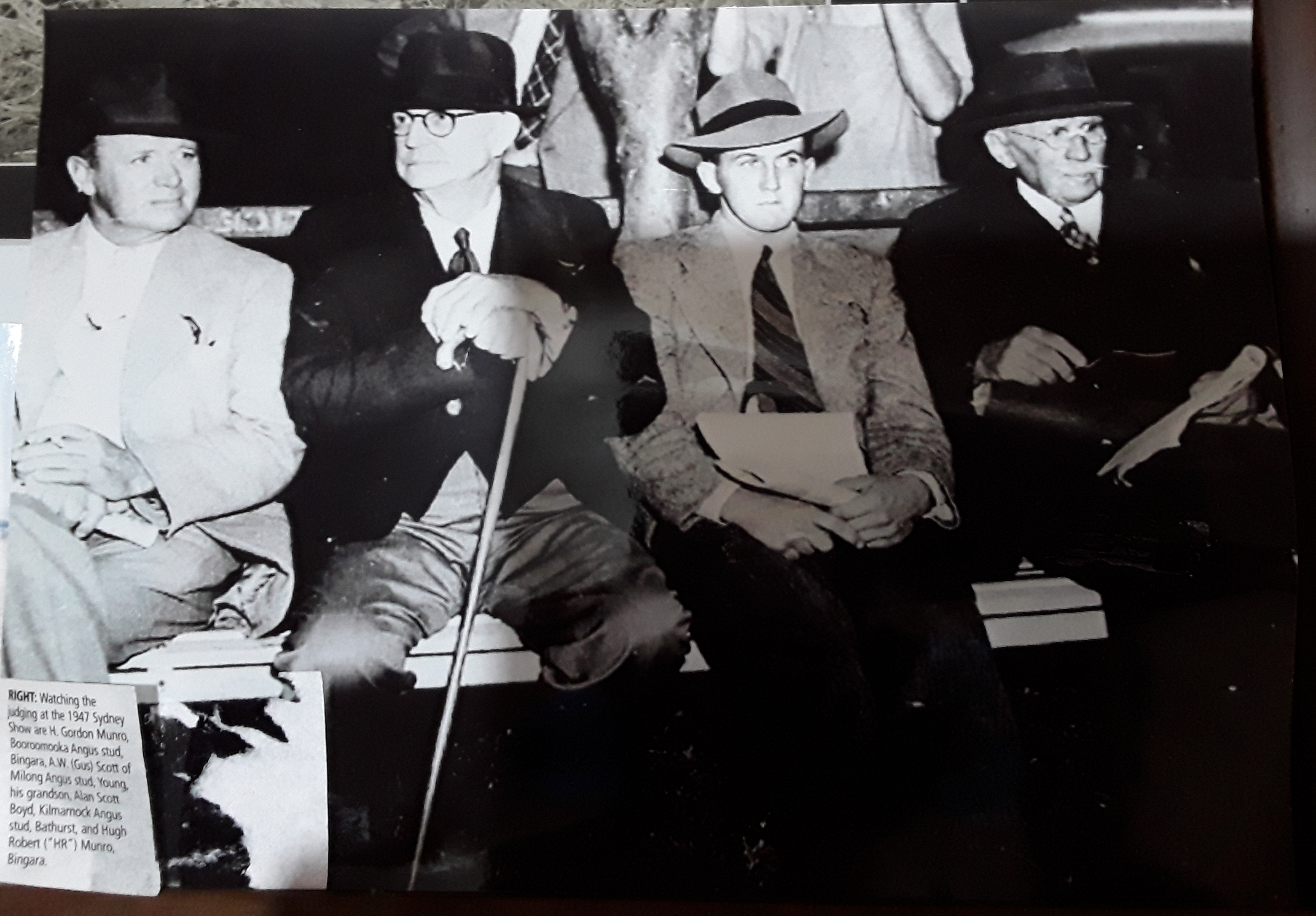 Watching the judging at the 1947 Sydney Show are H. Gordon Munro, Booroomooka Angus stud, Bingara.  A.W (Gus) Scott of Milong Angus stud, Young, his grandosn Alan Scott Boyd, Kilmarnock Angus stud, Bathurst and Hugh Robert (