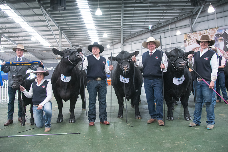 Breeders Group - Pine Creek Angus Stud Pty Ltd